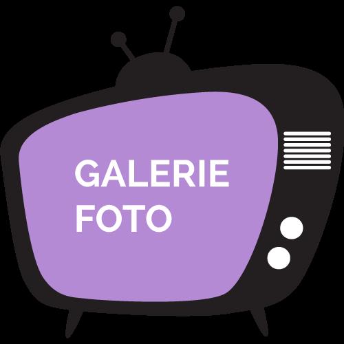 galerie-detalii